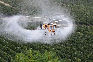 elicottero-Prosecco