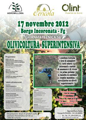 incontro-17-novembre-2012