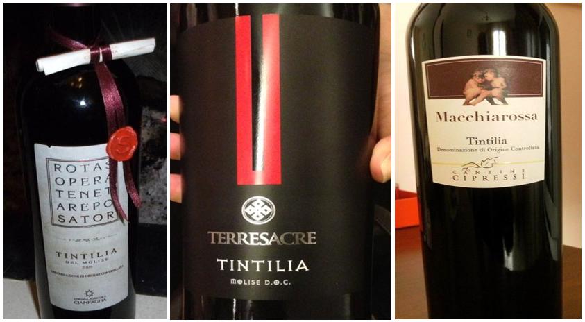vini-buoni-2015-Molise-7